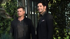 Lucifer: sezonul 3 episodul 16 Infernal Guinea Pig