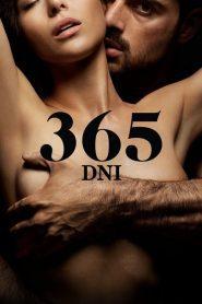 365 de zile (365 dni)