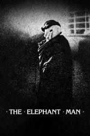 Omul elefant