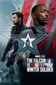 The Falcon and the Winter Soldier: Sezonul 1